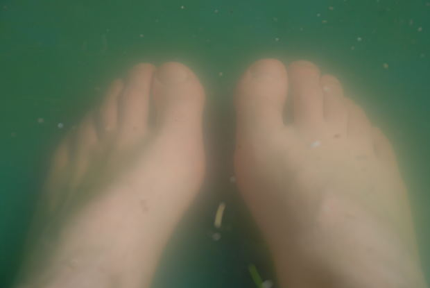 picture of feet in apple cider vinegar solution