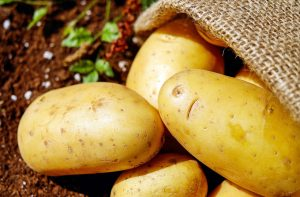 Potatoes and Gout